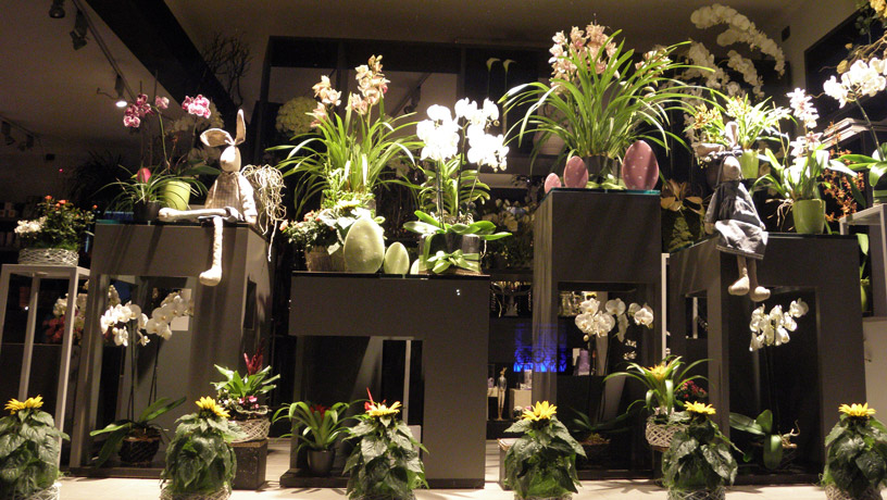 ALTEREGO-LABFLOR-FLORAL-DESIGN-HOME-SHOWROOM1